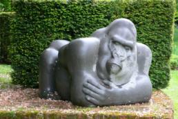 Gorilla - Belgian Fossil Marble
