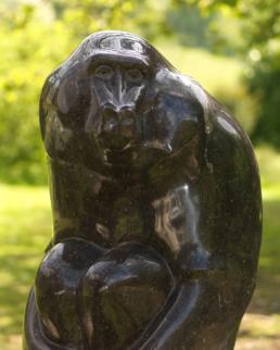Baboon – Kilkenny Limestone
