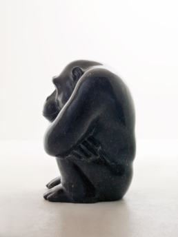 Chimpanzee – Belgian Fossil Marble
