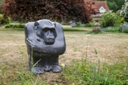 Chimpanzee – Belgian Fossil Marble
