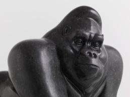 Gorilla – Belgian Fossil Marble