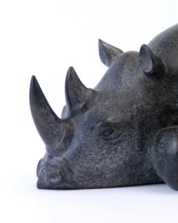 Rhino – Bronze