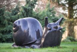 Snail – Kilkenny Limestone