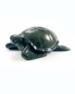 Turtle – Bronze